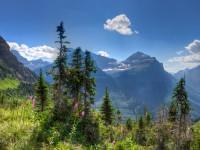 Protecting Glacier National Park